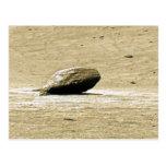 La roca más sola postales