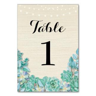 La tabla numera Succulents del boda las tarjetas