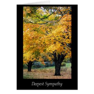 La tarjeta de condolencia más profunda de los árbo
