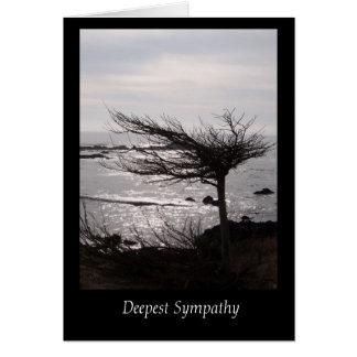 La tarjeta de condolencia más profunda del árbol W