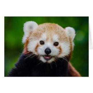 La tarjeta de la panda roja