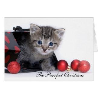 La tarjeta de Navidad de Purrfect