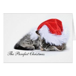 La tarjeta de Navidad del purrfect