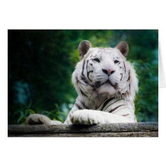 La tarjeta de nota blanca del tigre (v1)