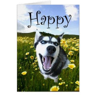 La tarjeta fornida más linda del feliz cumpleaños