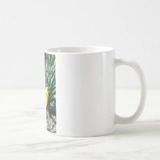 La taza de café del narciso