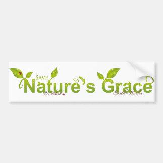 La tolerancia de la naturaleza con la mariquita pegatina de parachoque