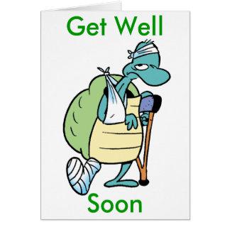 La tortuga del pantano consigue pronto la tarjeta