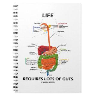 La vida requiere porciones de tripa (el sistema cuaderno