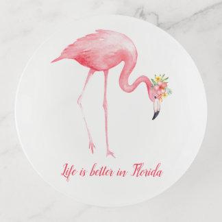 La vida rosada del flamenco es mejor en la Florida