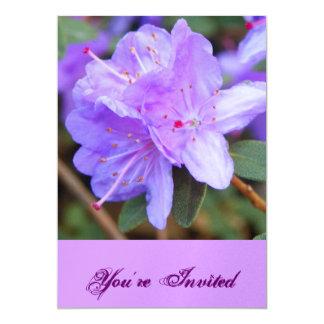 La violeta invita invitación 12,7 x 17,8 cm