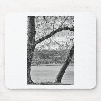 La visión a través de los árboles desea BW máximo Alfombrilla De Ratón