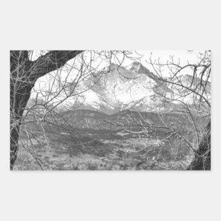 La visión a través de los árboles desea BW máximo Pegatina Rectangular