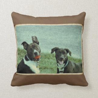 Laboratorio y almohada negros del perro de Terrier