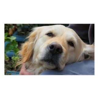 Labrador de amor tarjetas de visita