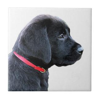 Labrador negro - vestido en rojo azulejo