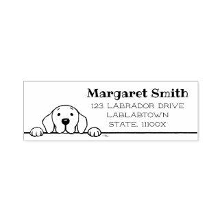 Labrador que le mira dirigir el sello