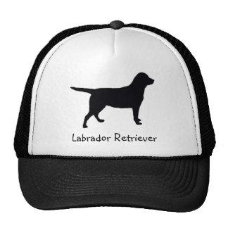 Labrador retriever gorro