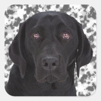 Labrador retriever negro pegatina cuadrada