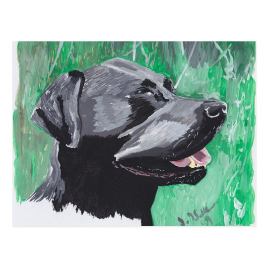 Labrador retriever postal