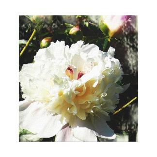 Ladra Fleur Impresiones En Lona