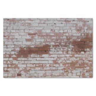 Ladrillos pintados papel de seda