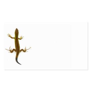 lagarto tarjetas de visita