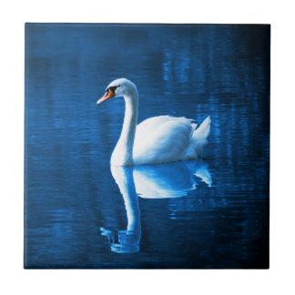 Lago blanco elegante blue de la calma del cisne azulejo