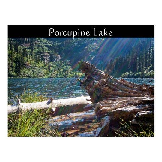 """~ """"lago de la POSTAL porcupine"""" cerca de la"""