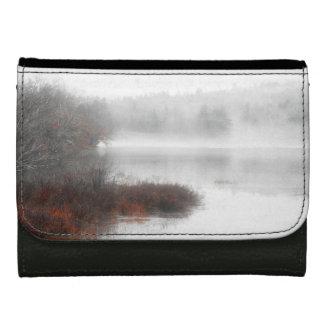 Lago de niebla en un día de invierno