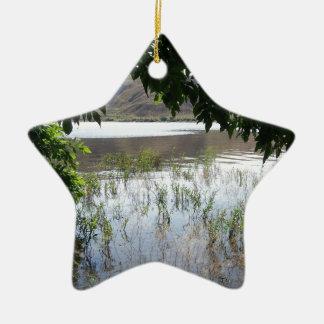 Lago herboso con la rama de árbol adorno navideño de cerámica en forma de estrella