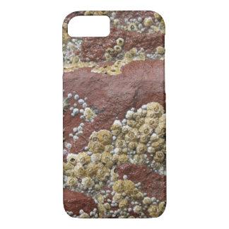 Lapa y caso rosados del iPhone de la lapa Funda iPhone 7