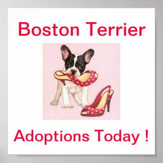 Las adopciones del perro de Boston Terrier firman  Póster