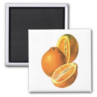 Las comidas del vintage, dan fruto los naranjas imán