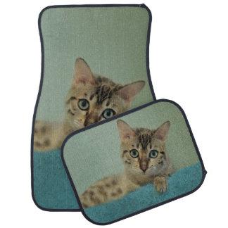 Las cosas lindas vienen en paquetes del gatito alfombrilla de coche