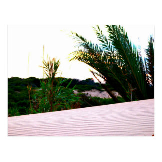 Las dunas de La Marina, España - tarjeta postal