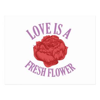 Las flores añaden estilo único y lo animan a postal