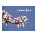 Las flores rosadas blancas le agradecen postal