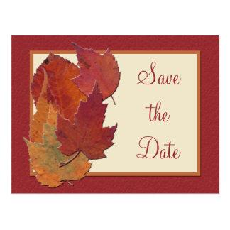 Las hojas de otoño II ahorran la postal de la