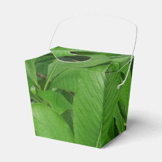 Las hojas verdes sacan la caja del favor