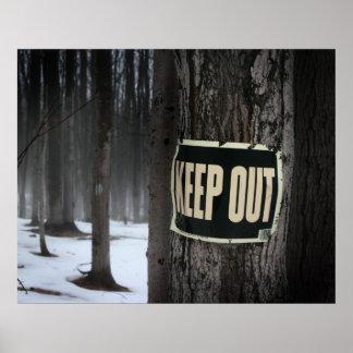 Las maderas del invierno guardan hacia fuera los