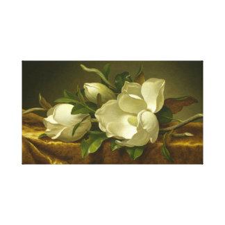 Las magnolias clásicas estiraron arte de la lona