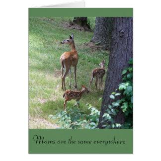 Las mamáes son iguales por todas partes tarjeta de felicitación