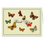 Las mariposas le agradecen tarjetón