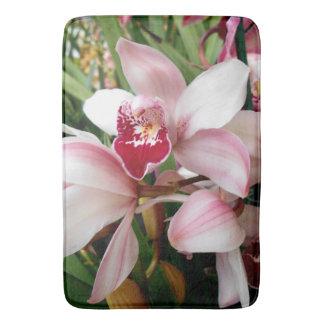 Las orquídeas del Cymbidium se ruborizan con el