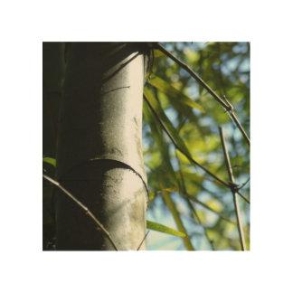 Las sombras del árbol de bambú impresión en madera