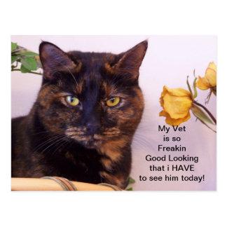 Las tarjetas veterinarias más apuestas postal