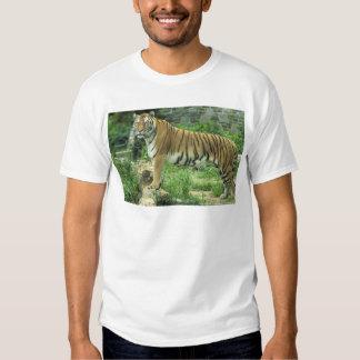 Las Tigre-Mejores fotos Camiseta