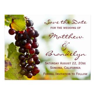 Las uvas del lagar del viñedo ahorran las postales