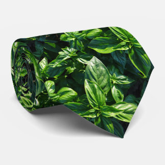 Lazo de la foto de la albahaca corbata